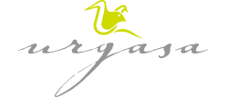 silver fern farms logo