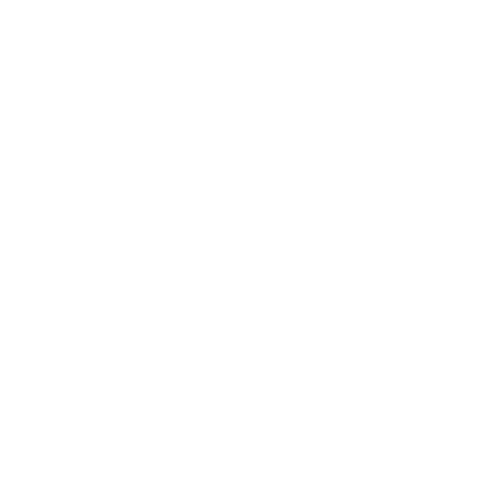 white rabbit icon